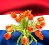 Mudanzas Holanda